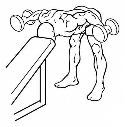 bent-over-rear-deltoid-raise-with-head-on-bench-large-2