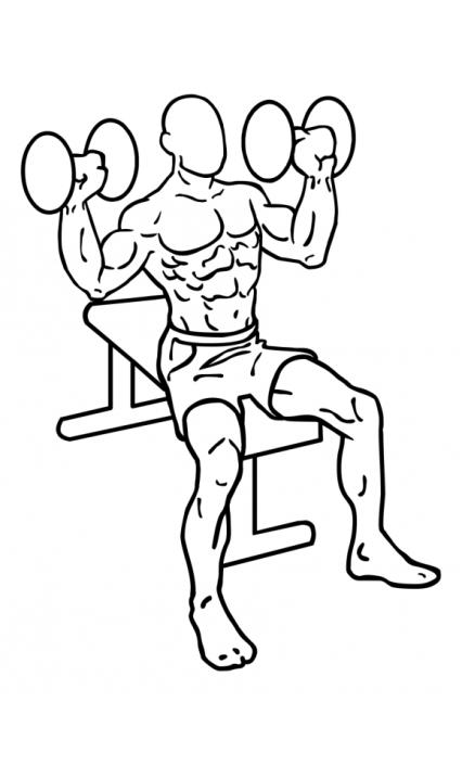 dumbbell-shoulder-press-large-1