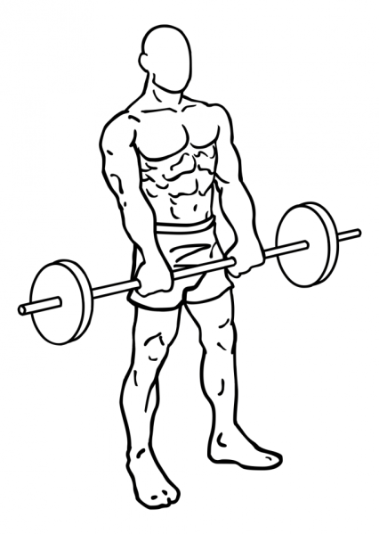 front-barbell-raises-large-2