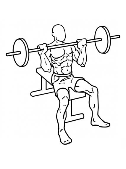 seated-barbell-shoulder-press-large-1