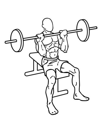 seated-military-press-large-1