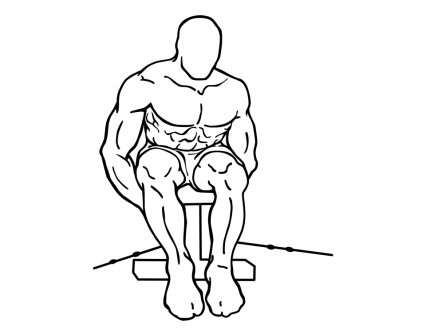 seated-rear-lateral-cable-raise-large-2