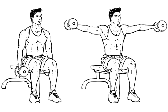 seated_lateral_dumbbell_raise-1
