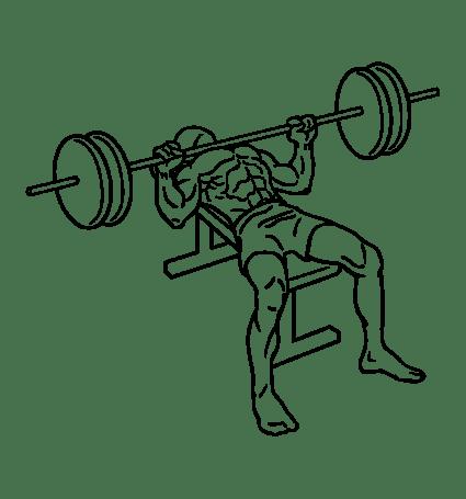 Bench_press_1.svg