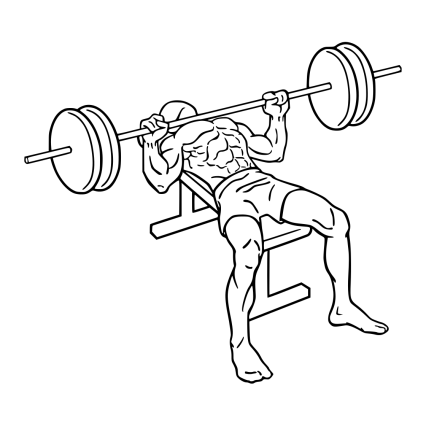 Bench_press_1.svg
