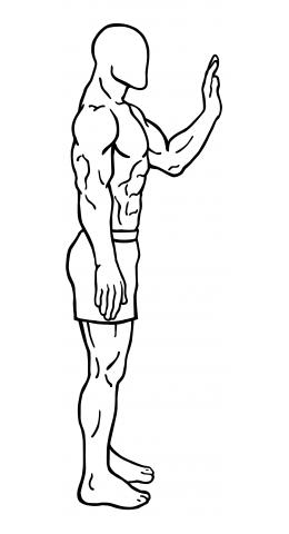 body-leg-lifts-medium-1