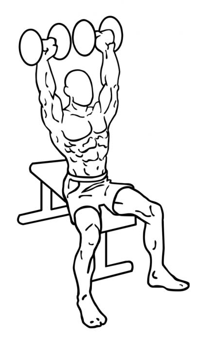 dumbbell-shoulder-press-large-2
