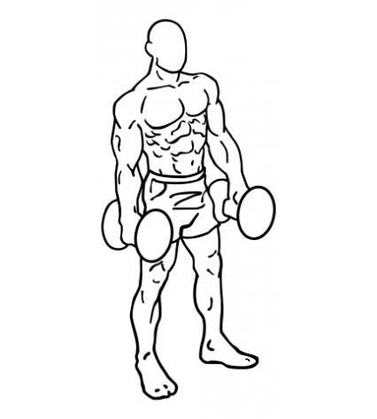 lateral-dumbbell-raises-medium-2