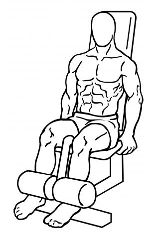 leg-extensions-medium-1