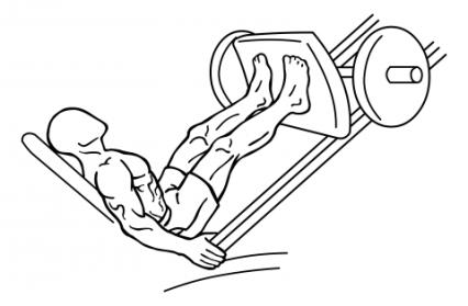 leg-press-medium-1