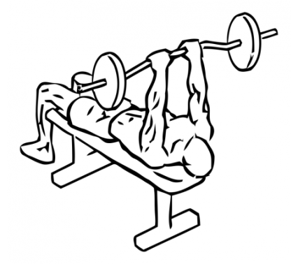 lying-close-grip-triceps-press-to-chin-with-barbell-medium-1