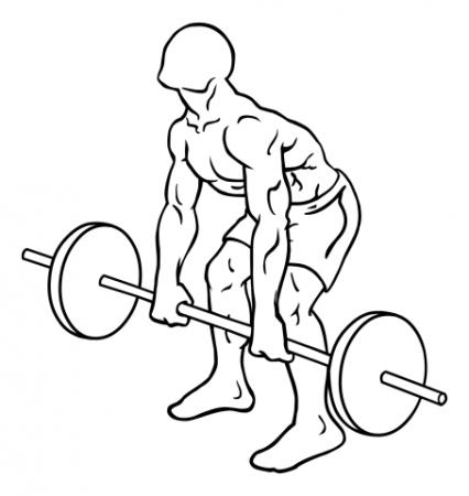 rear-deltoid-row-barbell-medium-1