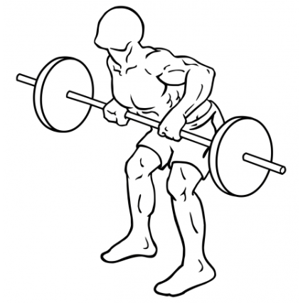 rear-deltoid-row-barbell-medium-2