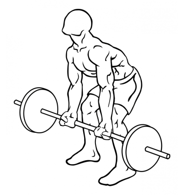 reverse-grips-bent-over-barbell-rows-large-1