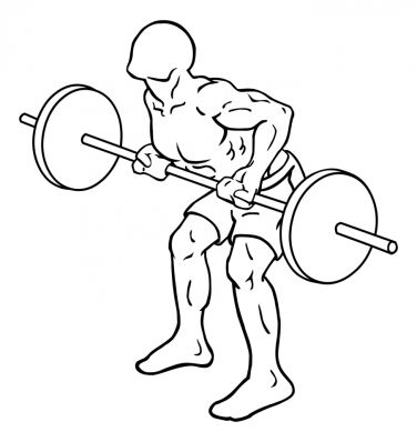 reverse-grips-bent-over-barbell-rows-large-2