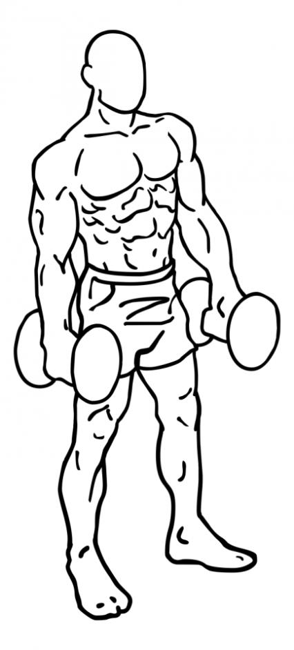 shoulder-shrugs-large-1