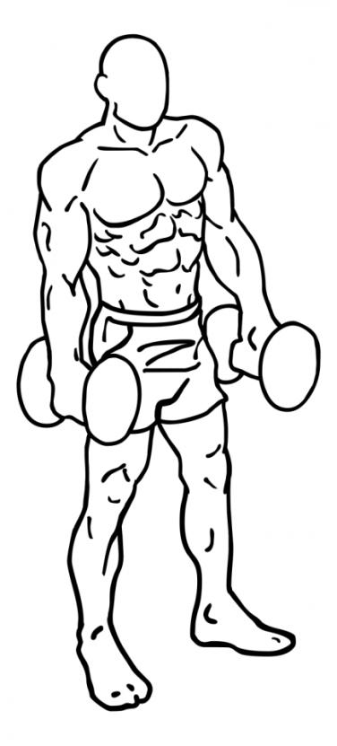 shoulder-shrugs-large-2