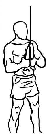 triceps-pushdown-with-rope-and-cable-medium-1