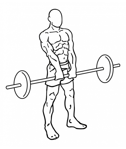 upright-barbell-rows-large-2