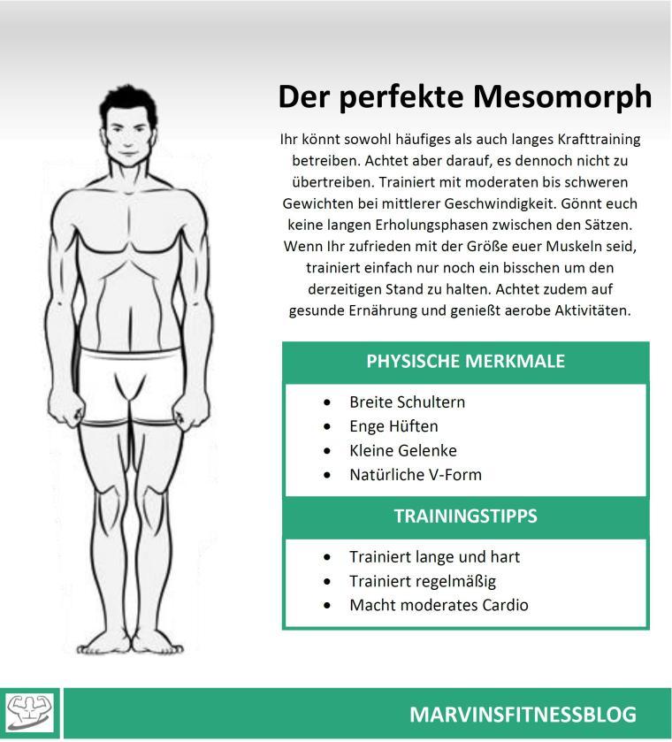 Mesomorph-Infografik