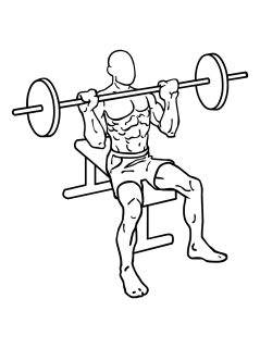 seated_barbell_shoulder_press-small-frame_1