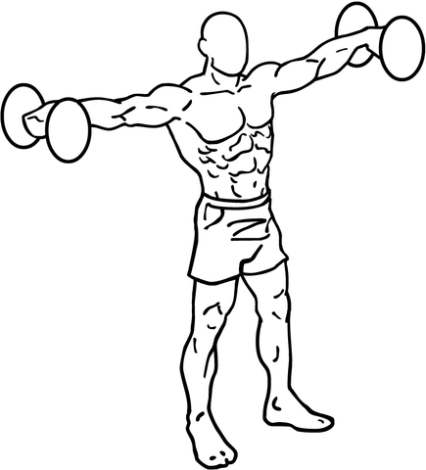 435px-Dumbbell-lateral-raises-1