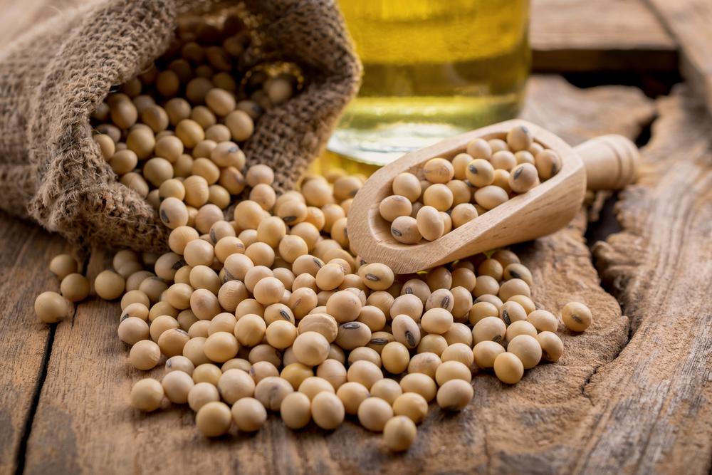 Ernährung: Die besten Proteinquellen für Veganer